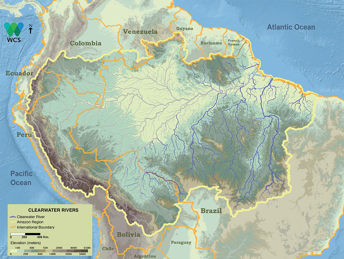 Clearwater rivers transport relatively few sediments and arise mostly on the ancient Brazilian and Guiana shields.