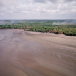 Extensive sediment deposits near the mouth of the Amazon River form large mudflats that are abutted by freshwater tidal forest.