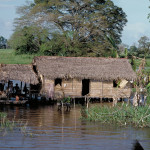 Stilted houses are a common feature on Amazonian floodplains. Most are constructed on the first levee bordering the river, as this is where the highest floodplain elevation is found near the main channel.