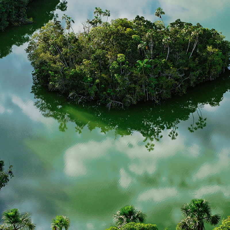 Blackwater Rivers Amazon Waters - Types of rivers in the world