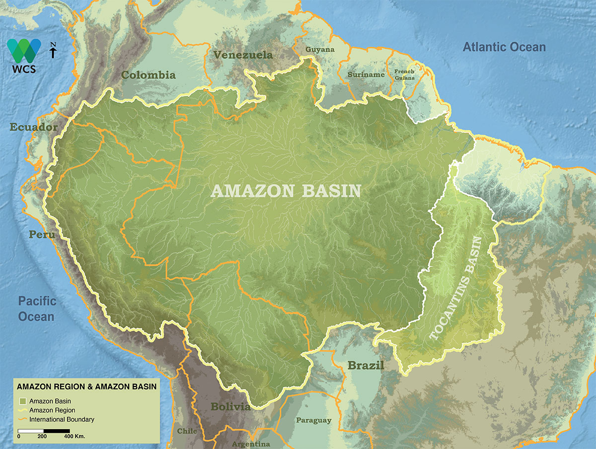 Basin Management Amazon Waters